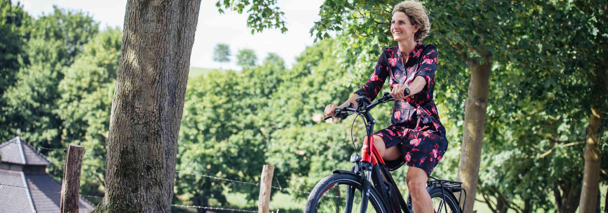 City & Touring E-Bikes Leonberg